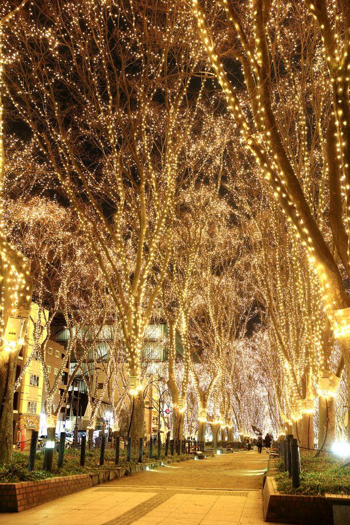 photo 683x1024 - 仙台の冬を代表するイベント2019SENDAI光のページェント